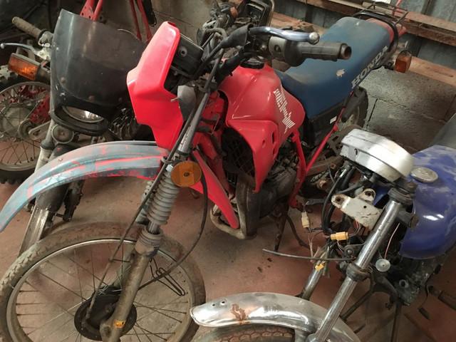 Mobs, motos et vélos... IMG_2861_Copier