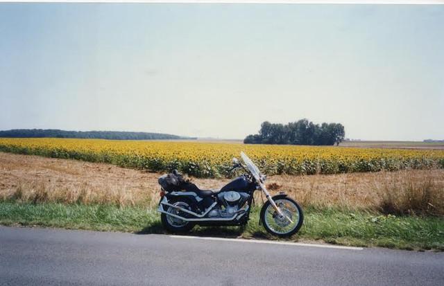 2000-Softail-Standard-touring-France-in-35-deg.jpg