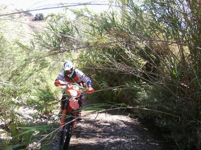 "Loja 500 trail 2018 - 3/4 de noviembre (dedicada a David ""carpenter"") Foto4903"