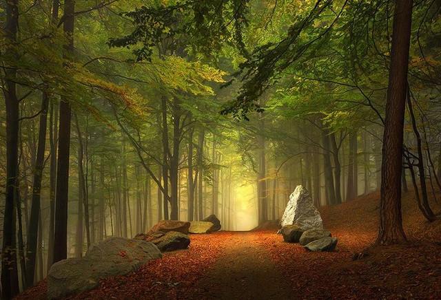 Тайна вечной жизни