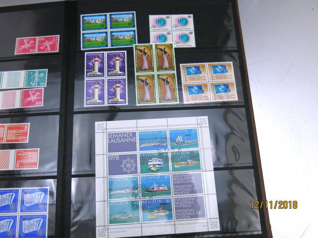 IMG-3204