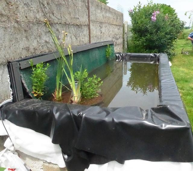 colle bache a bassin koi
