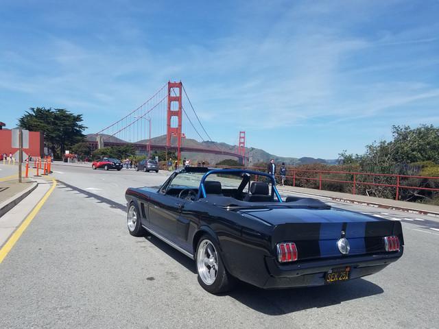 [Mustang_2]