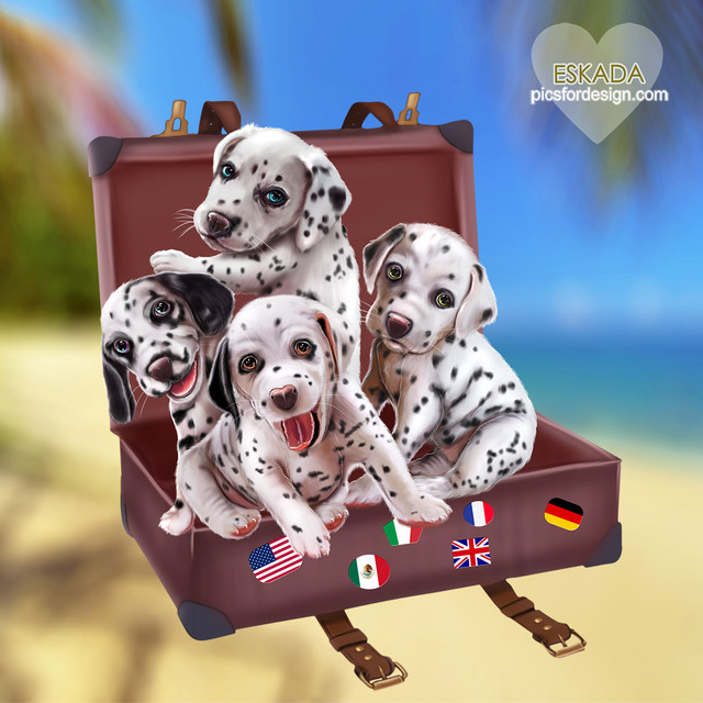 Dalmatians-travelers.jpg