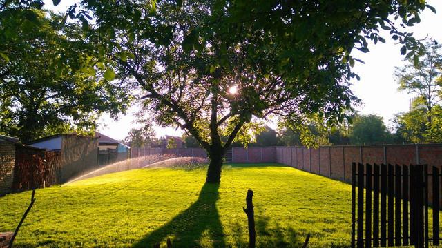 Dvoriste, travnjaci i ostala zelena površina - Page 20 123