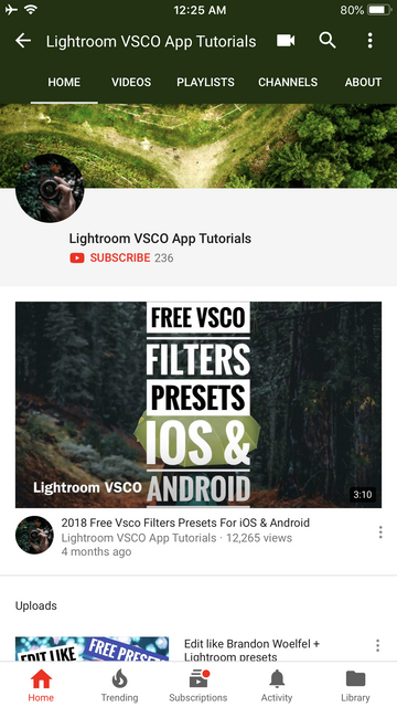 iOS Vsco Cam Full Pack Filters Artificial Light Series