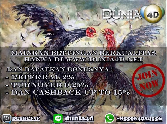 https://preview.ibb.co/i3wHR6/Lukisan_Sabung_Ayam_80x60_Lukisan_Ayam_Tarung_Ayam_2.jpg