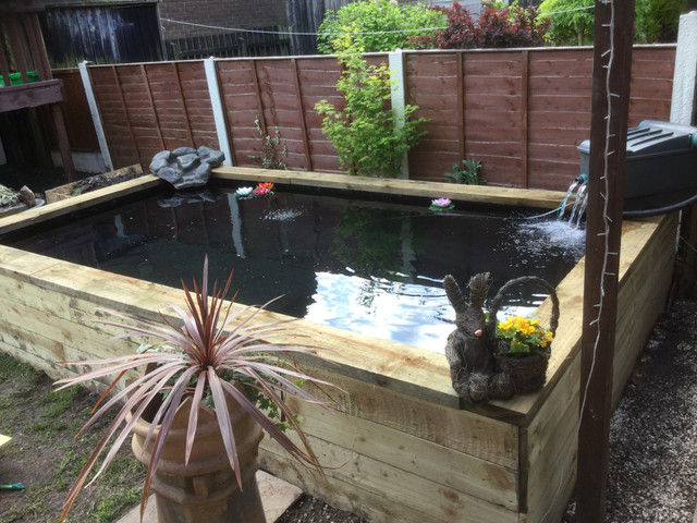 New member 1500 gallon raised koi pond the welcome mat for Koi pond forum