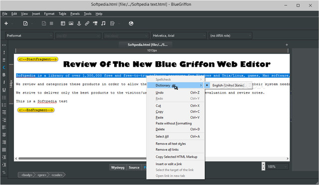 Review Of The New Blue Griffon Web Editor | TMW