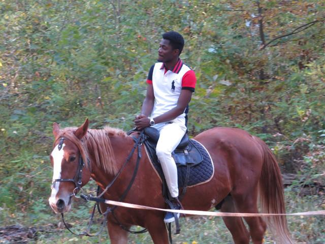 Покатушки на лошади