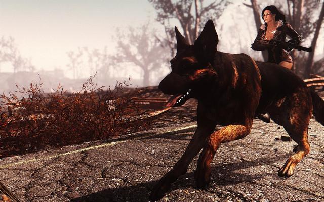 Fallout4 2018 08 22 12 24 20 66