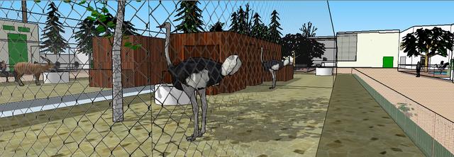 zoo61_copia