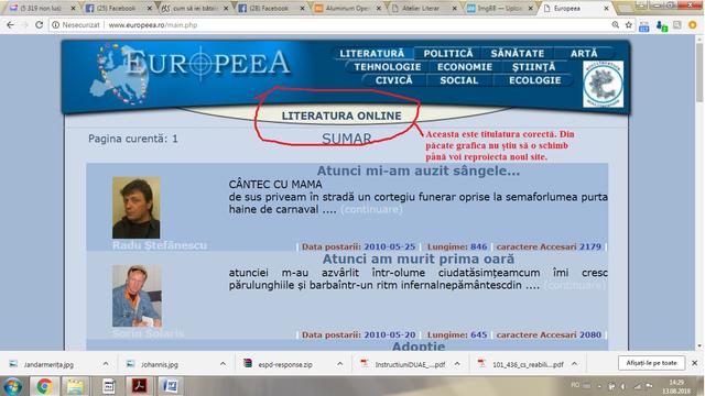 Printsceen_denumire_Literatura_online