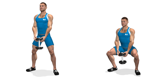 Sumo squat con manubrio