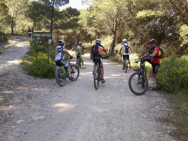 Jarapalos en bici Foto4881