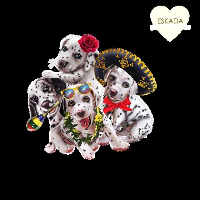 Dalmatians-travelers4.png