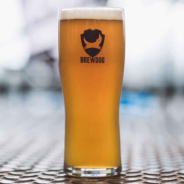 brewdog pint