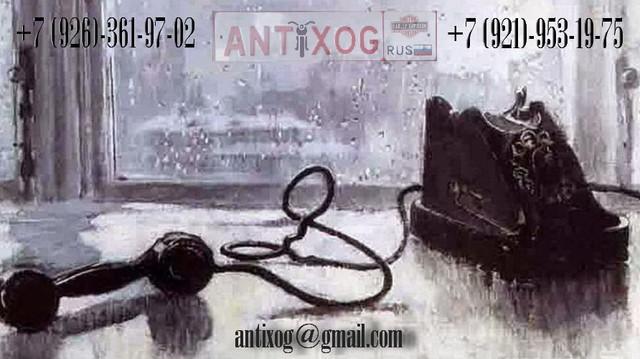 ant XOG phone 1