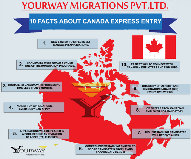 Canadian Immigration Lawyer In Toronto
