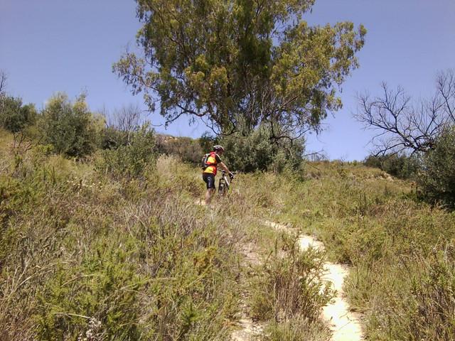 Jarapalos en bici Foto4889