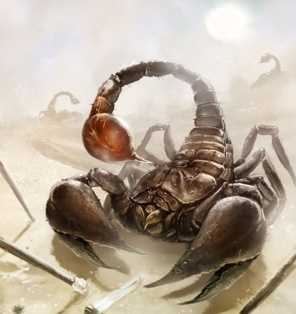 2 Scorpion King Scorpion