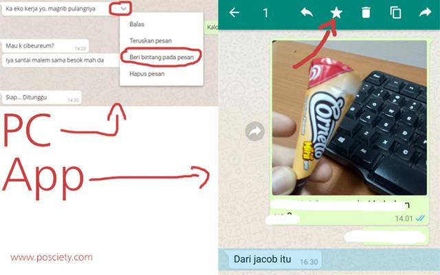 gambar 1 - pesan bintang whatsapp