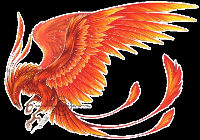 4 Firebird Phoenix