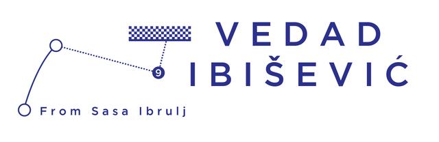 Vedad-Ibisevic-02