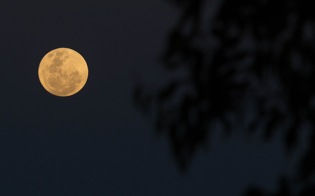 [Image: 20161114_Super_Moon_22.jpg]