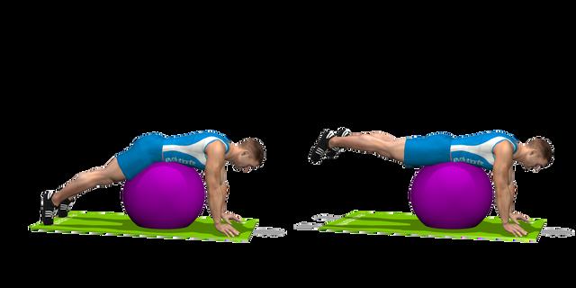 Alzate gambe stability ball