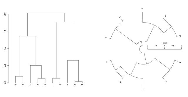 Circular_Dendrogram