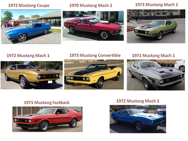 Mustang Collections