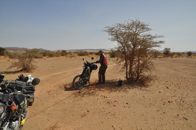 viaje al sur de marruecos DSC_0098