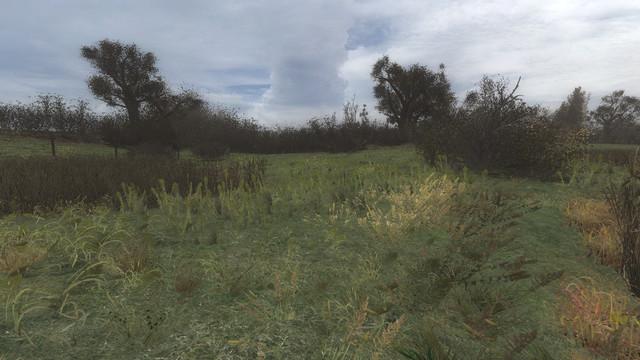 ss-10-18-18-16-24-15-marsh.jpg