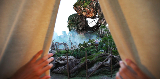 [Disney's Animal Kingdom] Pandora - The World of Avatar (27 mai 2017) - Page 11 W857
