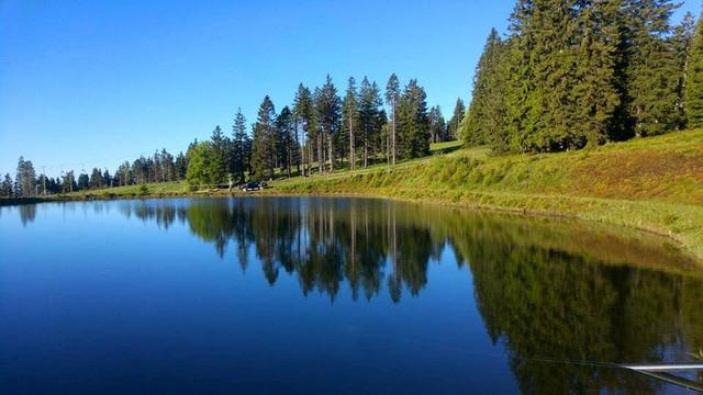 Petelinje jezero 1