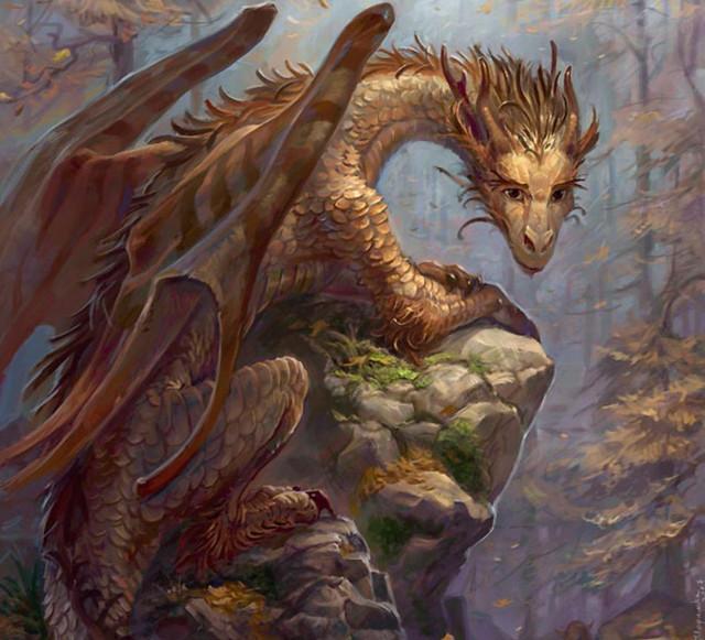 4 Brown Dragon
