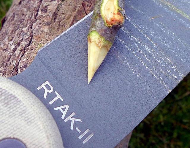 06-OKCtrio-RTAKII-stick-P1160289.jpg