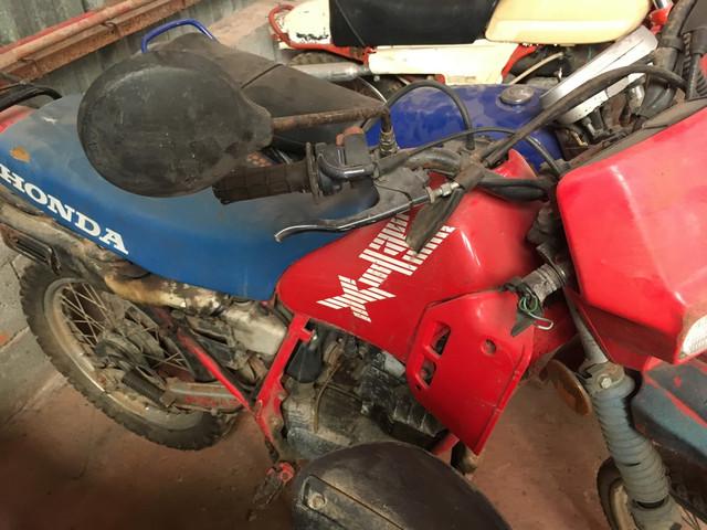 Mobs, motos et vélos... IMG_2808_Copier