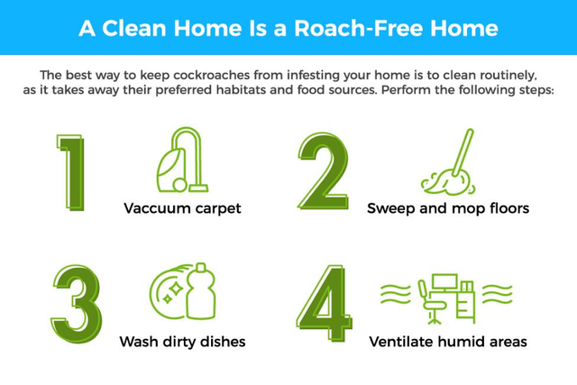 1) vacuum carpet 2) sweep and mop floors 3) wash dirty dishes 4) ventilate humid areas.