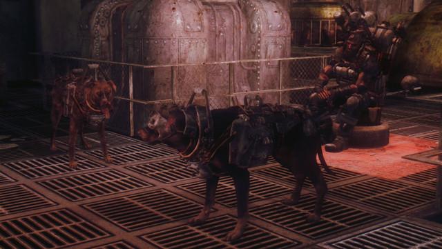 Fallout Screenshots XIII - Page 8 20180909190141_1