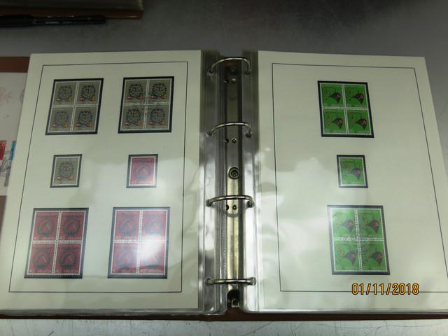 IMG-2478