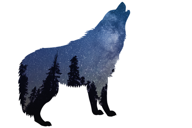 [Image: wolves_2954968_960_720.png]