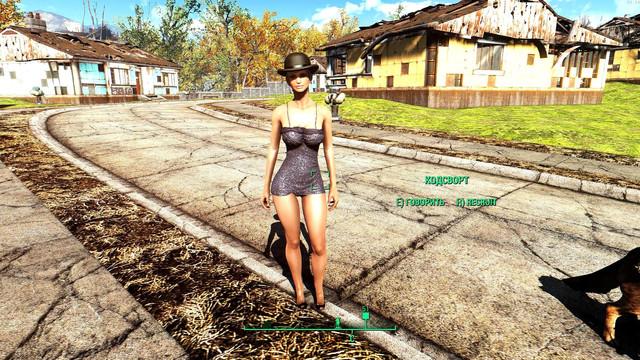 Fallout4_2017_11_24_20_24_49_78.jpg