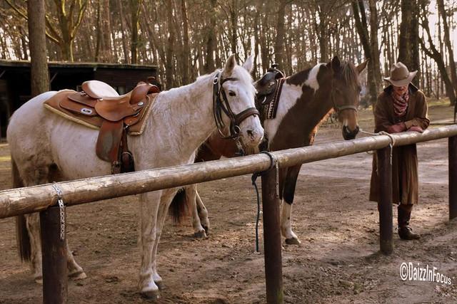29542124 1567731779941946 583208929271142749 n jpg Pony Express Station MM