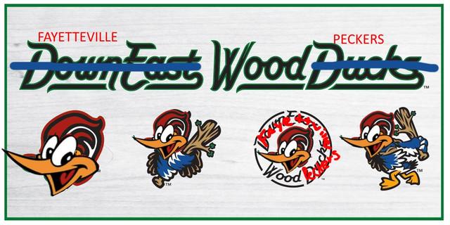 Down_East_Wood_Ducks.jpg